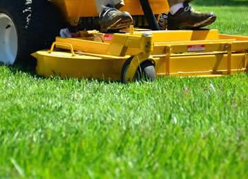 D Amp D Lawn Care Services Mowing Royal Oak Birmingham Troy Mi